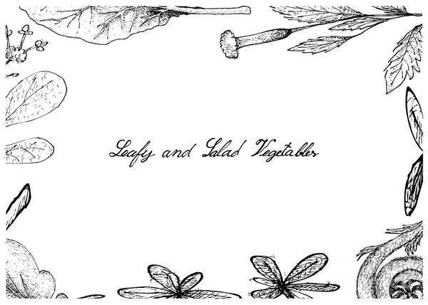 Organic Garden Drawing - Hand Drawn Of Leafy And Salad Vegetable by Iam Nee