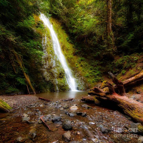 Wall Art - Photograph - Madison Falls by Twenty Two North Photography