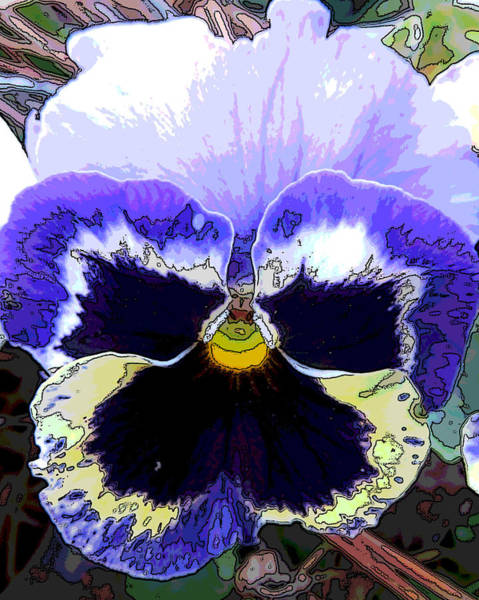 Posterize Photograph - Pansy by Michele Caporaso