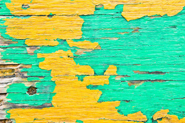 Wall Art - Photograph - Weathered Wood by Tom Gowanlock