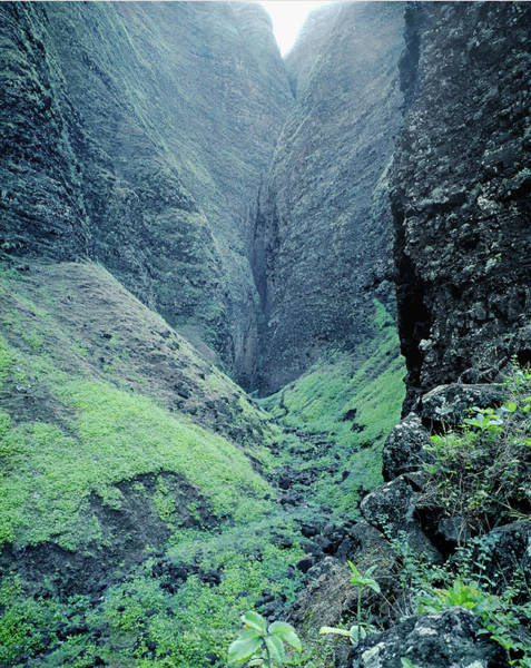 Photograph - 100186 Vertical Headwall Na Pali Coast by Ed Cooper Photography