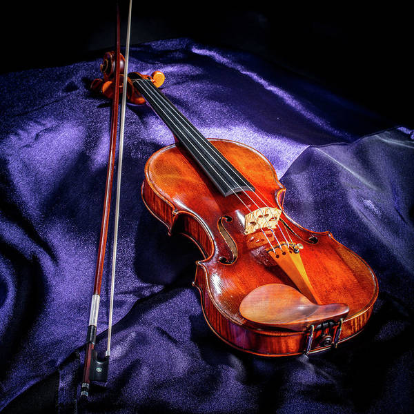 Photograph - 101 .1841 Violin By Jean Baptiste Vuillaume by M K Miller