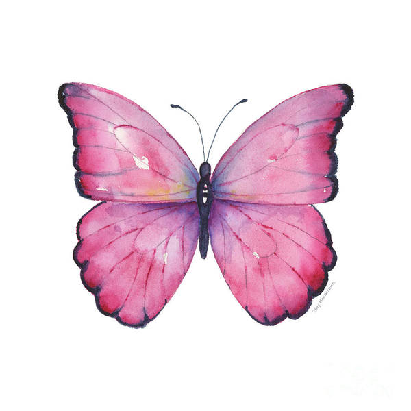 Wall Art - Painting - 105 Pink Celestina Butterfly by Amy Kirkpatrick