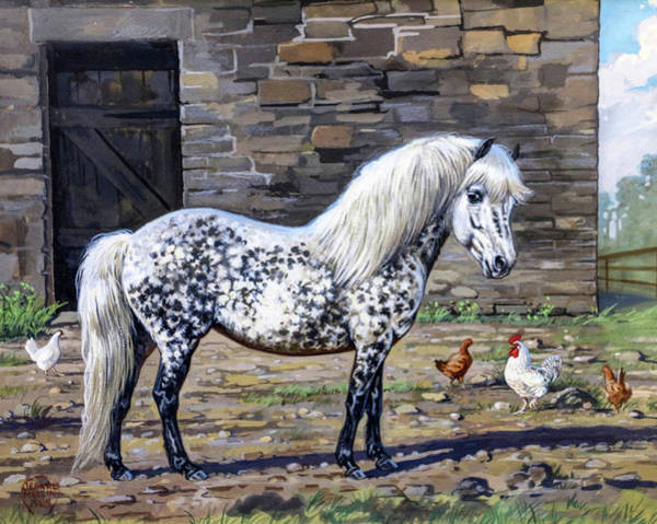 Jeanne Wall Art - Painting - #106 - The Dappled Pony by Jeanne Mellin Herrick