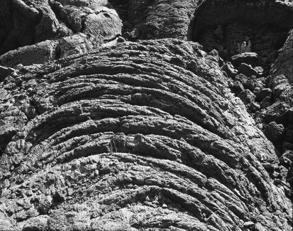 Photograph - 107716 Frozen Pahoehoe Lava by Ed Cooper Photography