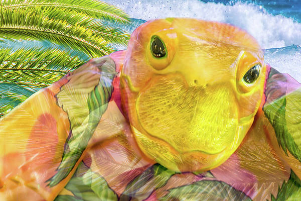 Smile Mixed Media - 10795 Sea Turtle by Pamela Williams
