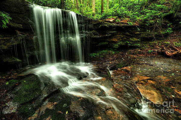 Photograph - Lin Camp Branch Waterfall by Thomas R Fletcher