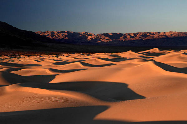 Photograph - Mesquite Sand Dunes In Death Valley National Park by Pierre Leclerc Photography