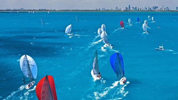 Photograph - Miami Skyline Regatta by Steven Lapkin