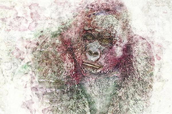 Photograph - 11028 Mr Gorilla by Pamela Williams