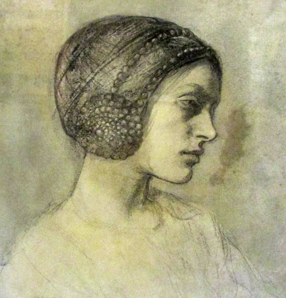 Wall Art - Painting - Portrait Of A Lady by MotionAge Designs