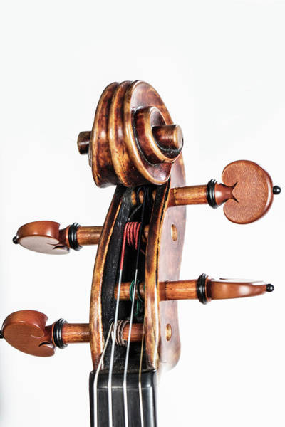 Photograph - 119 .1841 Violin By Jean Baptiste Vuillaume by M K Miller