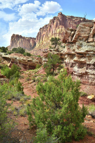 Photograph - Capitol Reef Scenic Drive by Ray Mathis