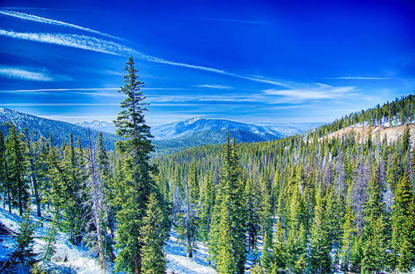 Photograph - Colorado Rocky Mountains Near Monarch Pass by Alex Grichenko