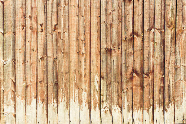 Privacy Photograph - Fence Panels by Tom Gowanlock