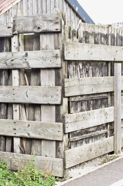 Condition Wall Art - Photograph - Fence by Tom Gowanlock