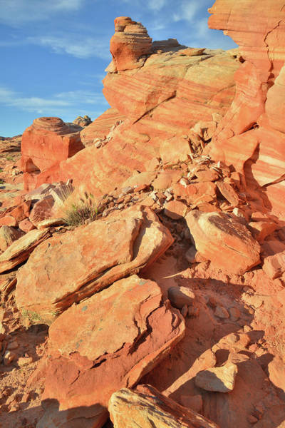 Photograph - Morning At Valley Of Fire by Ray Mathis