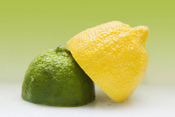 Horizontally Photograph - 12 Organic Lemon And 12 Lime by Marlene Ford