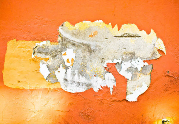 Wall Art - Photograph - Peeling Paint by Tom Gowanlock