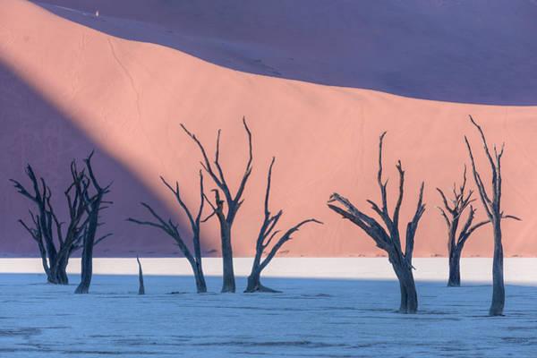 Sossusvlei Photograph - Sossusvlei - Namibia by Joana Kruse