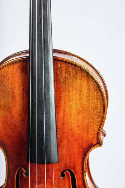 Photograph - 121 .1841 Violin By Jean Baptiste Vuillaume by M K Miller