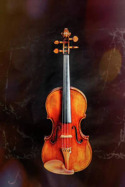 Photograph - 128 .1841 Violin By Jean Baptiste Vuillaume by M K Miller