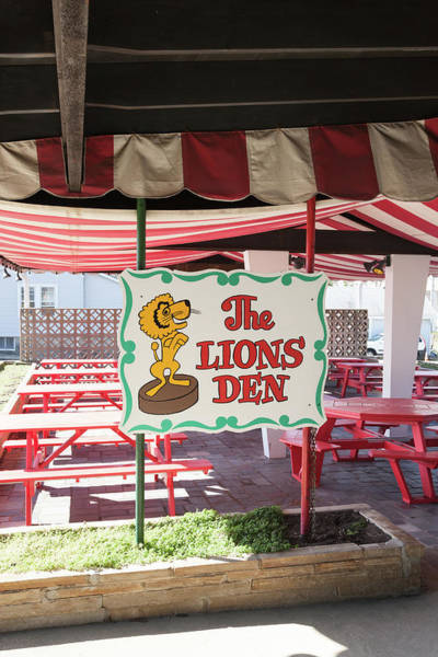 Lion In Winter Photograph - Circus Drive-in  by Erin Cadigan