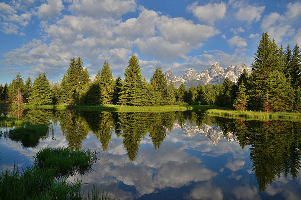 Photograph - Grand Teton National Park by Ray Mathis