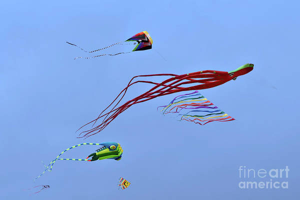 Kite Festival Wall Art - Photograph - Kites Flying During Kite Festival by George Atsametakis