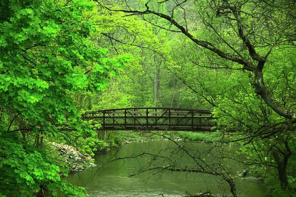 Photograph - Jacobsburg State Park Pa by Raymond Salani III