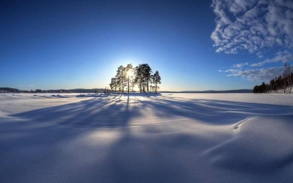 Sunset Digital Art - Winter by Maye Loeser