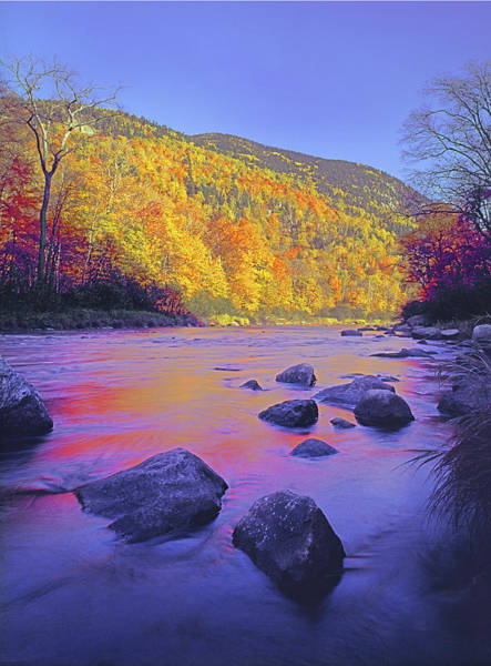 Photograph - 131707 Ausable River Fall Reflect V by Ed  Cooper Photography