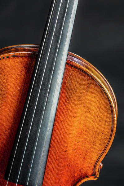Photograph - 132 .1841 Violin By Jean Baptiste Vuillaume by M K Miller