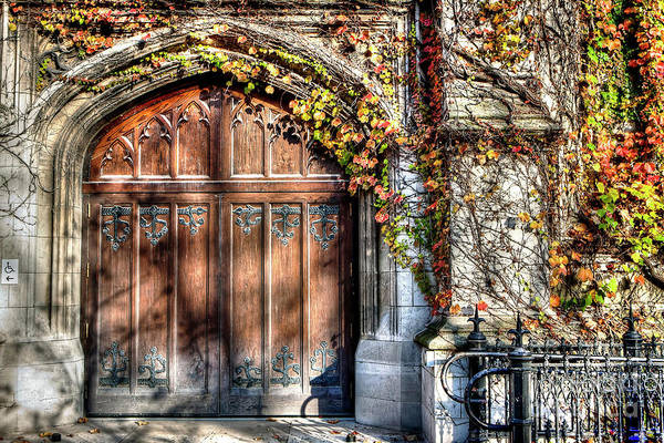 Wall Art - Photograph - 1335 University Of Chicago Doorway by Steve Sturgill