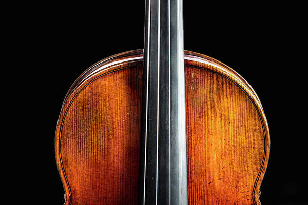 Photograph - 135 .1841 Violin By Jean Baptiste Vuillaume by M K Miller