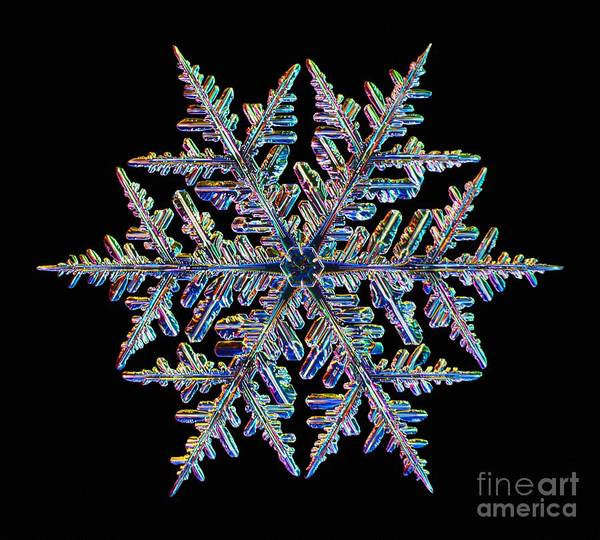 Photograph - Snowflake by Kenneth Libbrecht
