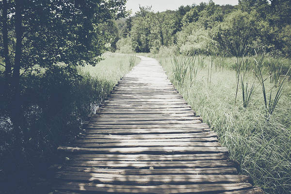 Photograph - Retro Hiking Path With Sunlight With Instagram Style Vintage Fil by Brandon Bourdages