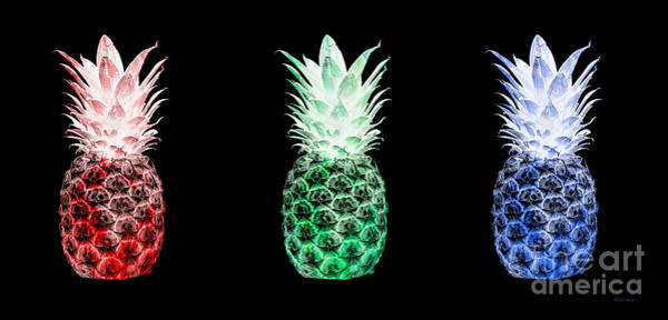 Photograph - Triptych 14m Artistic Pineapple Red Green Blue by Ricardos Creations