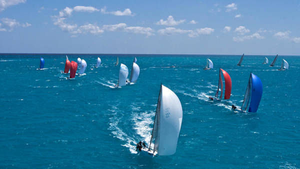 Photograph - Tp52 Miami Regatta by Steven Lapkin