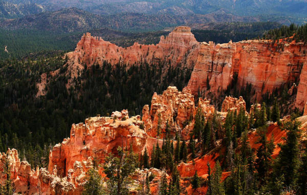 Photograph - Bryce Canyon National Park by Mark Smith