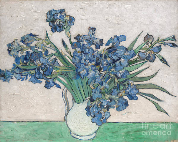 Painting - Irises by Celestial Images