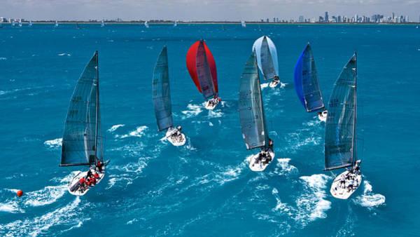 Photograph - Miami Regatta by Steven Lapkin
