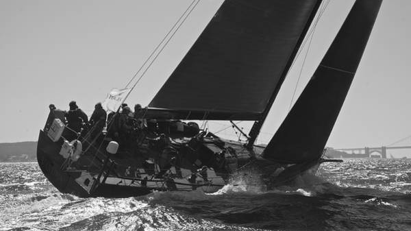 Photograph - Bay Regatta by Steven Lapkin