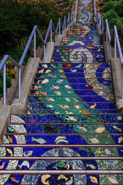 Thoroughfare Photograph - 16th Avenue Tiled Steps by Garry Gay