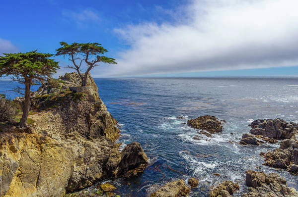 Wall Art - Photograph - 17 Mile Drive Pebble Beach by Scott McGuire