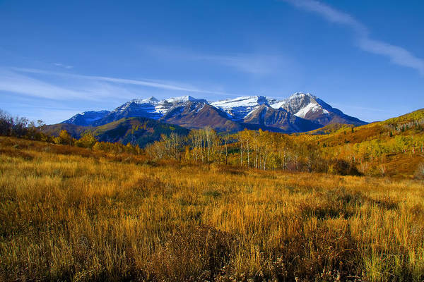 Photograph - Fall by Mark Smith