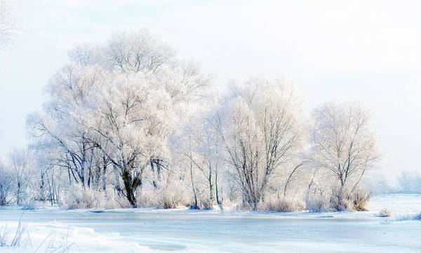 Dnieper Photograph - Frozen Water, Snow And Ice On The Dnieper River by Alain De Maximy