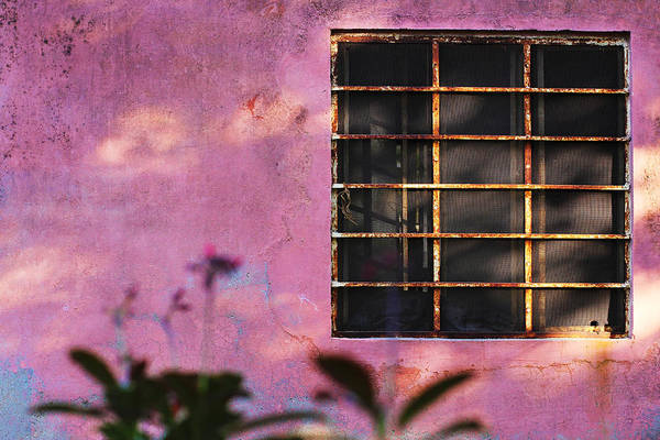 Wall Art - Photograph - 18 Rectangles  by Prakash Ghai