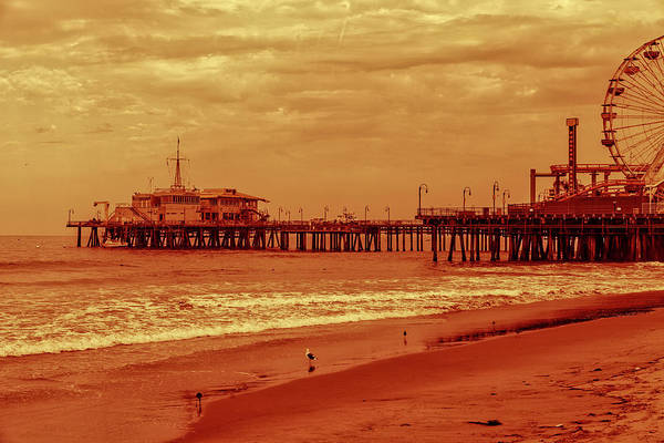 Photograph - Santa Monica Pier Collection- 4/36 by Gene Parks