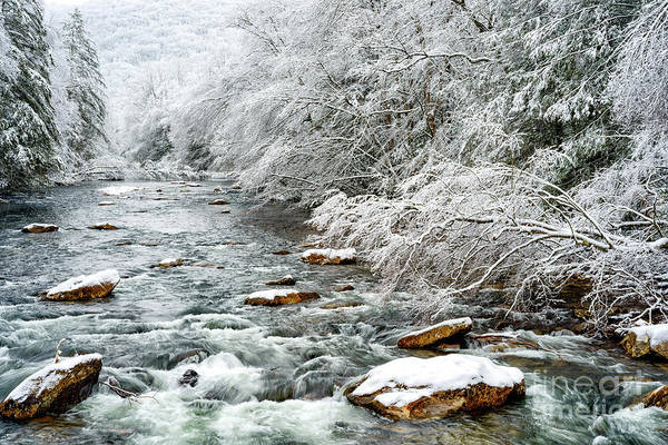 Photograph - Winter Along Cranberry River by Thomas R Fletcher